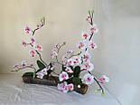 Орхидея  фаленопсис двойная средняя с латексным листьями и корнем 40 см, фото 9