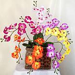 Орхидея  фаленопсис двойная средняя с латексным листьями и корнем 40 см, фото 3