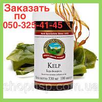 Келп (Бурая водоросль) НСП. Витамины для улучшения работы щитовидной железы