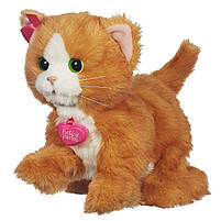 Интерактивный игривый котенок Дейзи Hasbro FurReal Friends Daisy (A2003), фото 2
