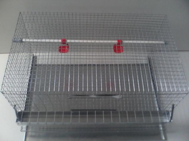 Клетка куриная