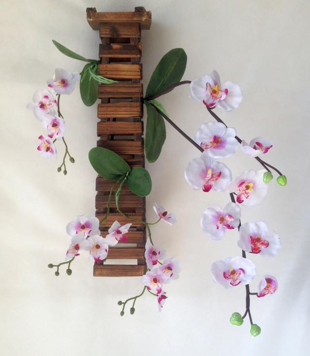 орхидея заливка