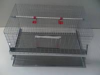 КК-1( клетка куриная)