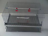 КК-1( клетка куриная), фото 1