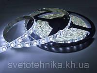 Лента светодиодная MagicLed с чипом Epistar (Тайвань) суперяркая 50*50 60шт/метр в силиконе(IP65) белая тёплая
