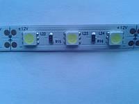 Светодиодная лента MagicLed (чип пр-ва Тайвань) 50*50 без сил (60шт/м) белая тёплая, фото 1