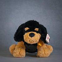 Мягкая игрушка STIP Ротвейлер, 35 см 100 ТМ: STIP