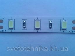 Светодиодная лента с чипом Epistar (Тайвань) Samsung 5630 максимальной яркости б\сил 12V (24w/m) белая тёплая