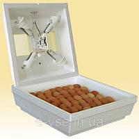 Инкубатор для яиц Квочка Ми-30-1 С, ручной переворот, ламповый, градусник, 70 яиц