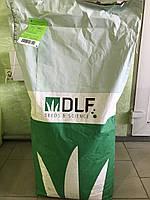 Семена травы газонной 20 кг сорт Robustica Универсальная DLF