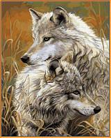 Картина по номерам Степные волки (в раме) (NB034R) 40 х 50 см DIY Babylon Premium (в раме)