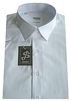 Мужская рубашка белая с коротким рукавом №10/3 - 40-100 V1 , фото 1