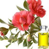 Камелии растительное масло, рафинированное