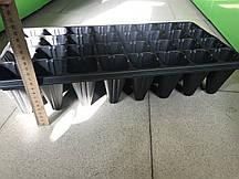 Кассета для рассады 32 ячейки, глубокая, толстостенная, 1 мм 540*280 мм