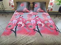 Комплект постельного белья ранфорс Орхидея
