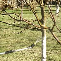 Обработка деревьев и кустарников от вредителей