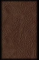 Leather - кожаный салон - запах кожи аэрозоль oasis Edition Line