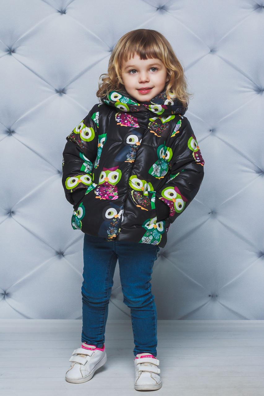 Курточка для девочки демисезонная принт Совы