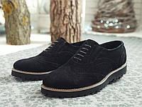 Туфли мужские замшевые броги / Webster