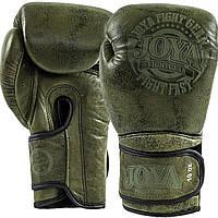 Перчатки Joya Fight Fast Green 12 oz, фото 1