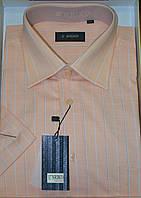 Мужская рубашка с коротким рукавом ENRICO (100%хлопок) (размеры М,L,XL,XXL)