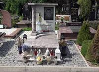 Пам'ятник гранітний одинарний з світлого граніту 5015, фото 1
