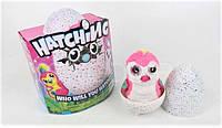 9950 Hatchimals  Интерактивная игрушка Пингви в яйце 4 вида