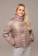 Куртка  демисезонная Весна с 40 по 50 размер  (5 цветов) (девис)