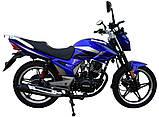 Мотоцикл Musstang Region МТ200-8 blue (Мусстанг Регион МТ200-8 синий 200 куб.см.), фото 2