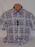 Рубашки мужские батальные, Турция, фото 2