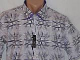 Рубашки мужские батальные, Турция, фото 3