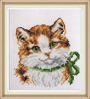 Набор для вышивки Идейка Модная кошка (ide_D189) 23 х 25 см
