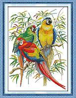 Вышивание крестиком Идейка Яркие попугаи (ide_D213) 40 х 54 см