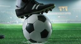 Футбол и футзал, гандбол