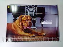 Альбом для рисования А4 60 листов 120 (100) г/м², скоба DOG ВОЗЛЕ РОЯЛЯ / альбом для малювання 60 аркушів