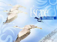 Escape - втеча - аерозоль Spring Air
