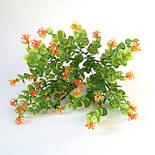 Букет самшит квітучий різнобарвний , 35см (20 шт в уп.), фото 5