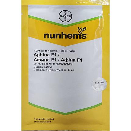 """Насіння огірка """"Афіна"""" F1 (1000 насінин) від Nunhems, фото 2"""