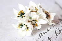 Декоративные бумажные цветочки 6 шт., диаметр 3-3.5 см см белого цвета