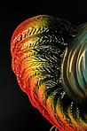 Садовая фигура петух, фото 5