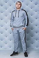 Мужской трикотажный спортивный костюм с лампасом серый