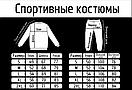 Мужской спортивный костюм (кофта+штаны), чоловічий спортивний костюм Reebok S185 рибок, фото 2