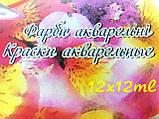 """Краски акварельные """"Olli"""" 12 цветов по 12мл. в тюбиках, фото 2"""