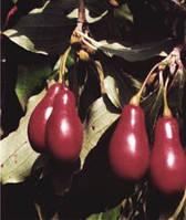 Кизил ягоды сухие 100 г