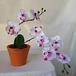 Орхидея  фаленопсис двойная средняя с латексным листьями и корнем 40 см, фото 10