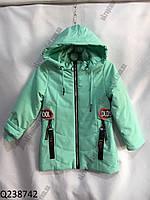 """Куртка на девочку весенняя (5-9лет) """"Spider""""  LB-1048, фото 1"""