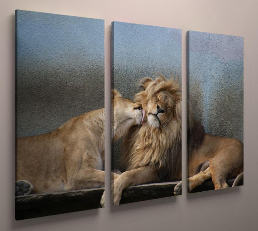 Модульная картина Львы 90х60