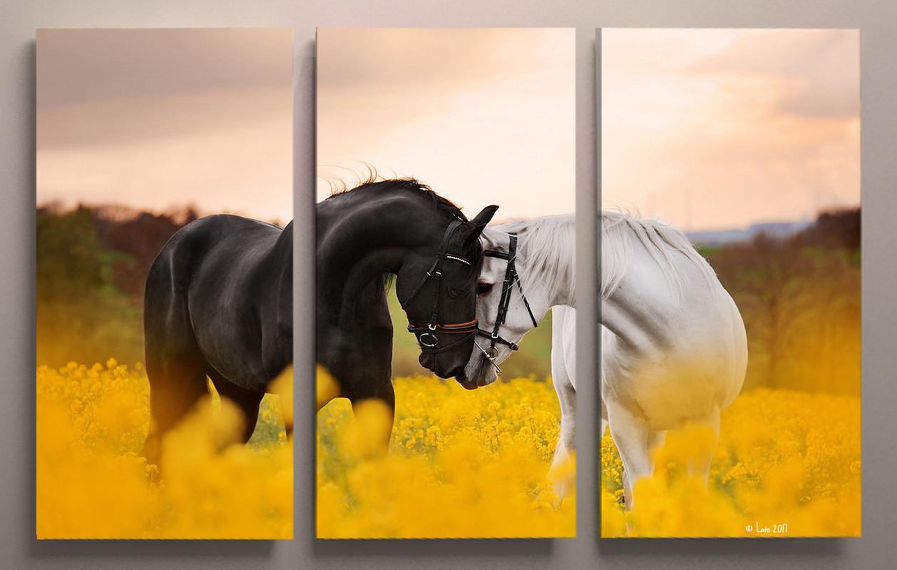 Картина модульная Лошади 90х60