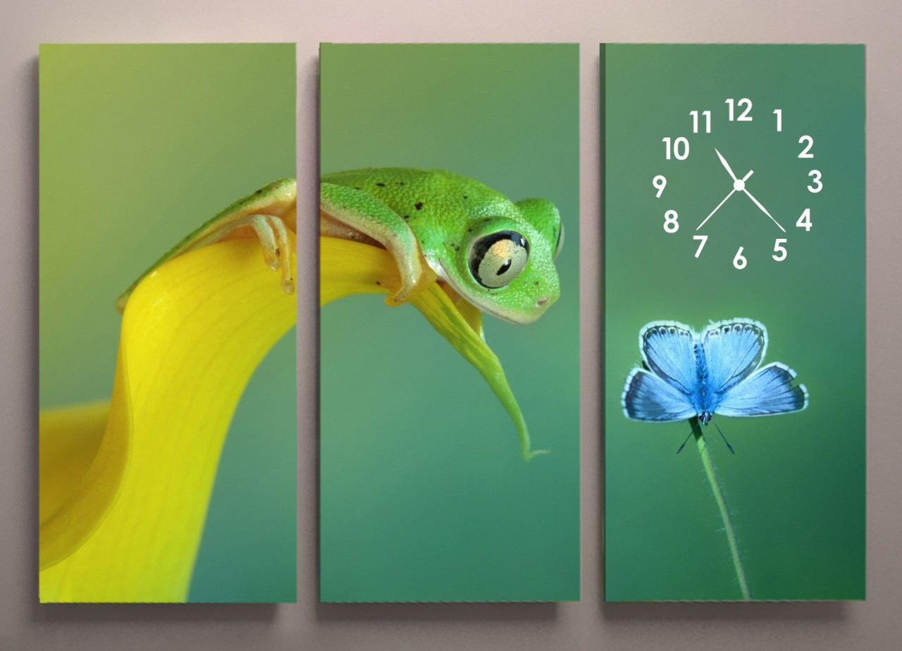 Картина модульная с часами Лягушка 90х60