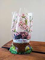 Пасхальные полипропиленовые пакеты для Пасхи 22.5х35 донная складка 3х20мм(4цв), фото 1